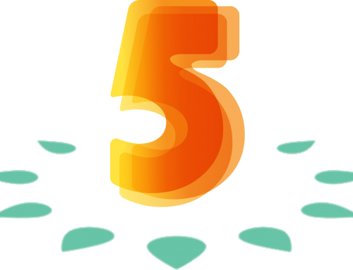 Synergy LT įsteigimo 5 metų gimtadienis